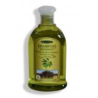 Shampoo rigenerante all'olio di oliva biologico con miele d'acacia e aloe vera